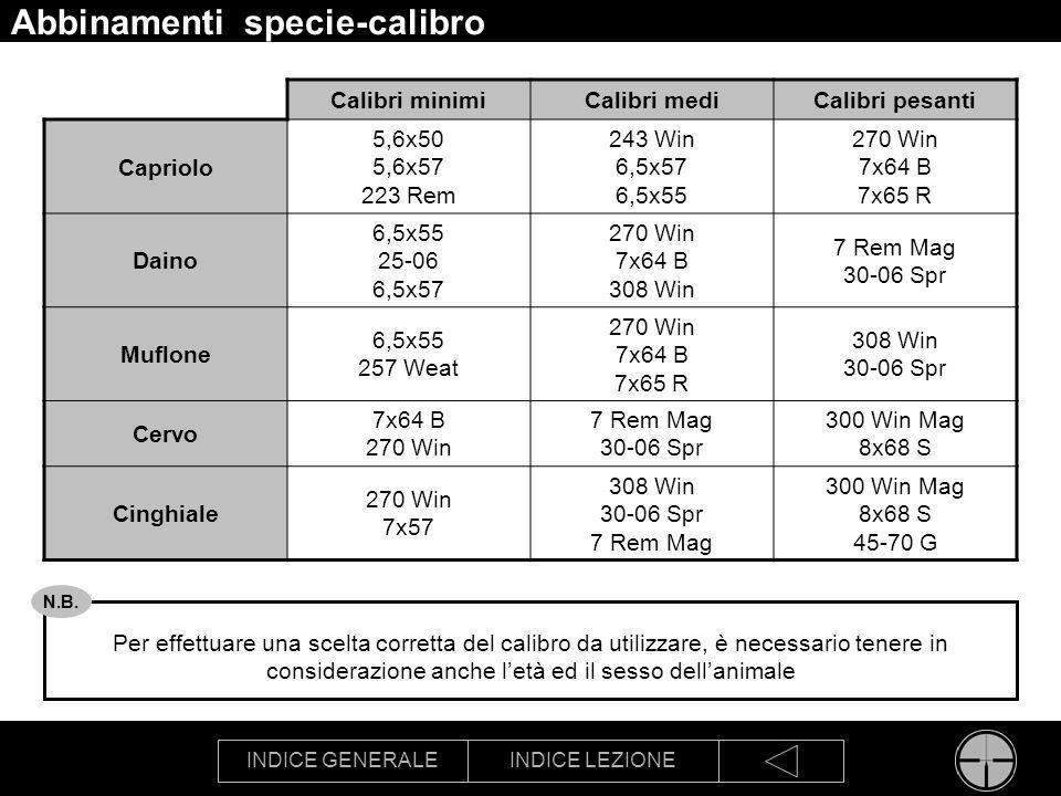 Abbinamenti specie-calibro