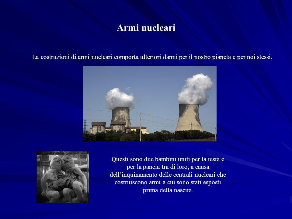 Armi nucleari La costruzioni di armi nucleari comporta ulteriori danni per il nostro pianeta e per noi stessi.