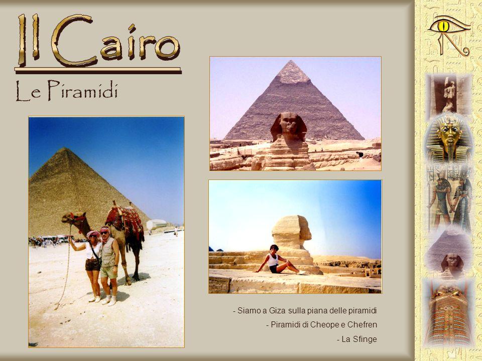 Il Cairo Le Piramidi Siamo a Giza sulla piana delle piramidi
