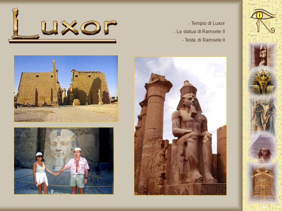Luxor Tempio di Luxor La statua di Ramsete II Testa di Ramsete II