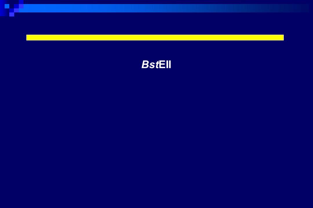 BstEII
