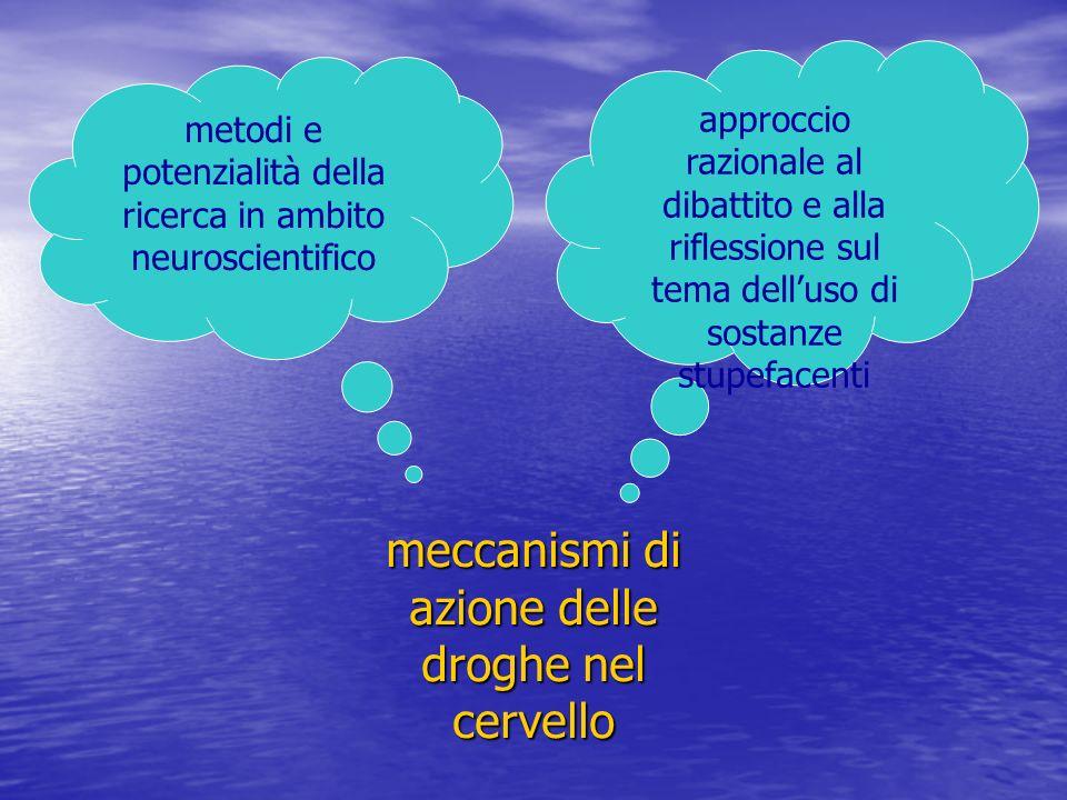 meccanismi di azione delle droghe nel cervello