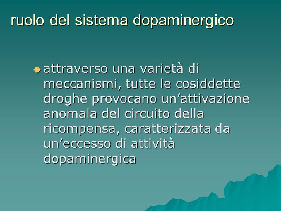 ruolo del sistema dopaminergico