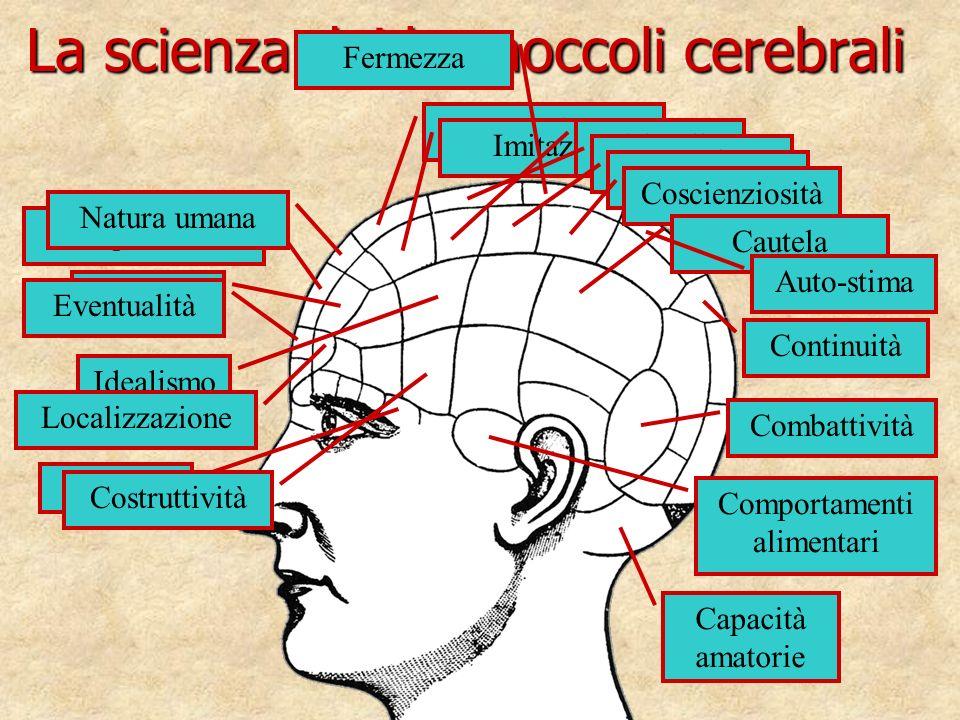 La scienza dei bernoccoli cerebrali