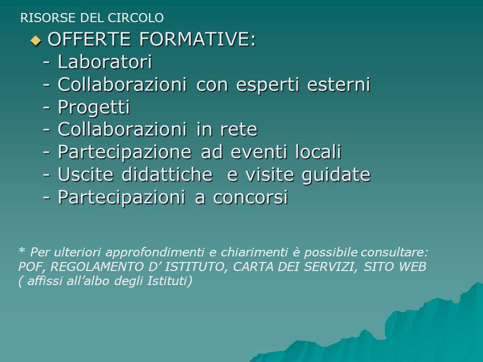 - Collaborazioni con esperti esterni - Progetti
