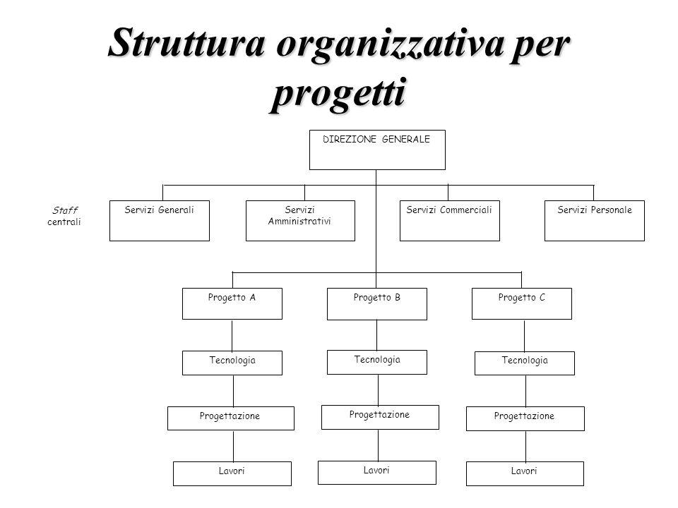 Struttura organizzativa per progetti