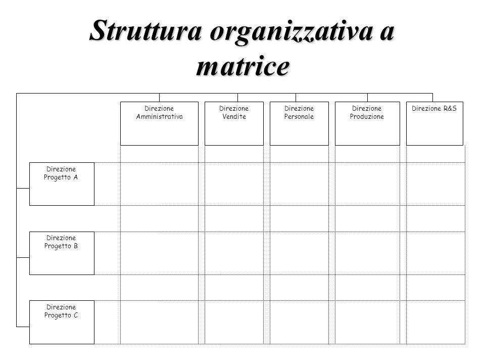 Struttura organizzativa a matrice