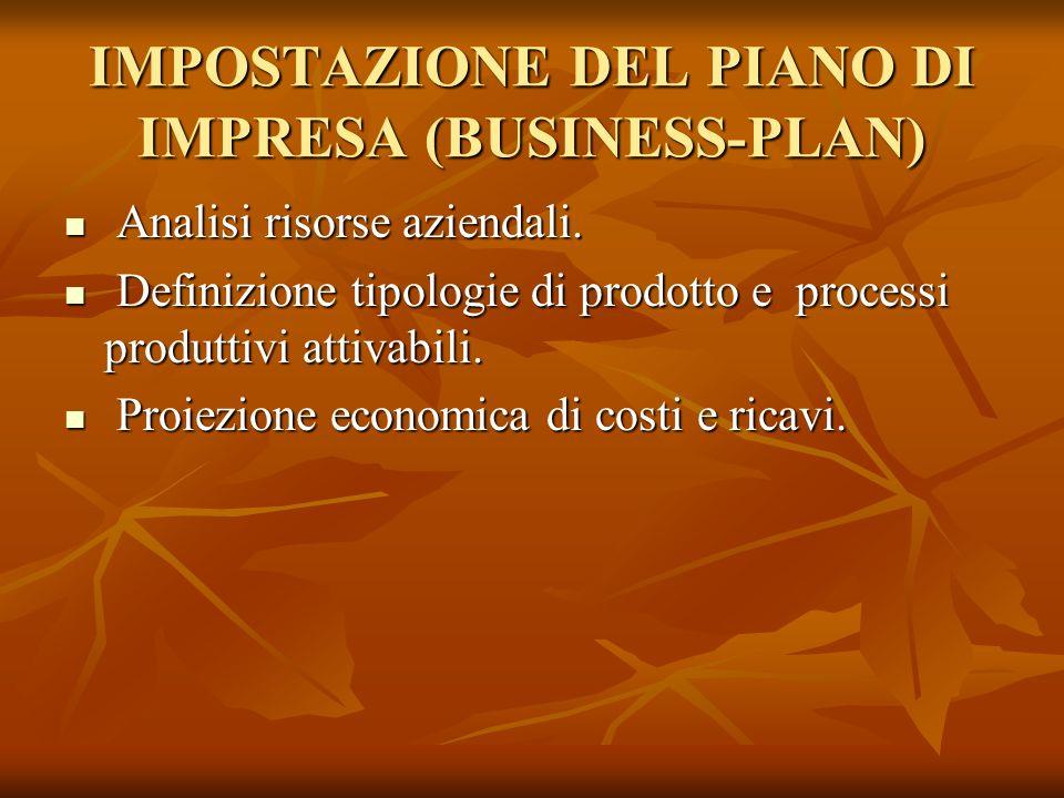 IMPOSTAZIONE DEL PIANO DI IMPRESA (BUSINESS-PLAN)