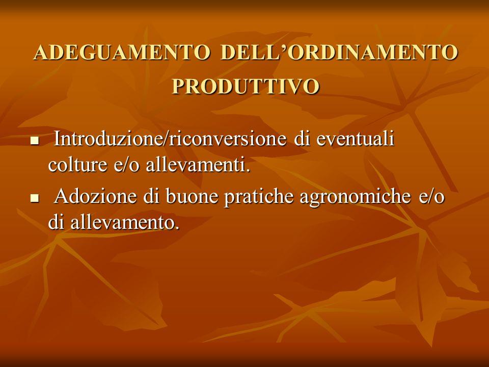 ADEGUAMENTO DELL'ORDINAMENTO PRODUTTIVO