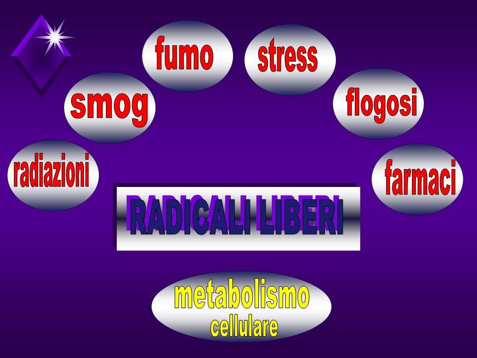 RADICALI LIBERI fumo stress flogosi smog radiazioni farmaci
