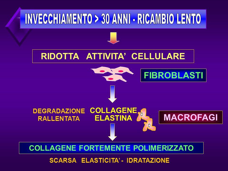 RIDOTTA ATTIVITA' CELLULARE FIBROBLASTI MACROFAGI