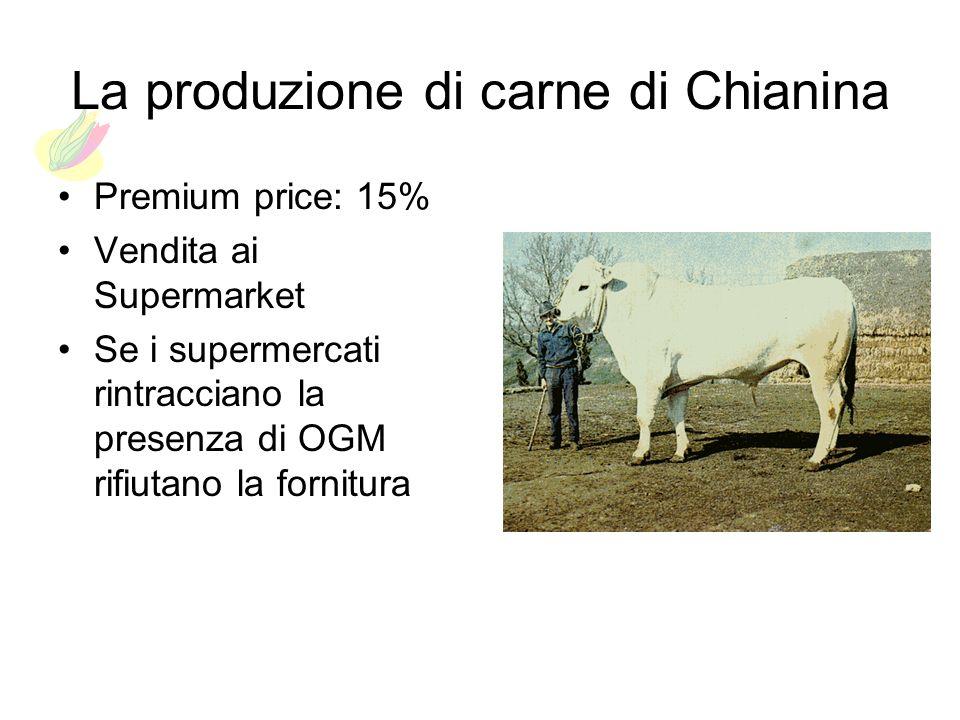 La produzione di carne di Chianina