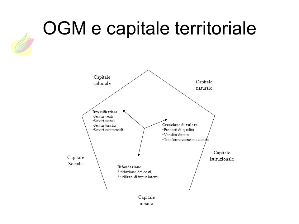 OGM e capitale territoriale