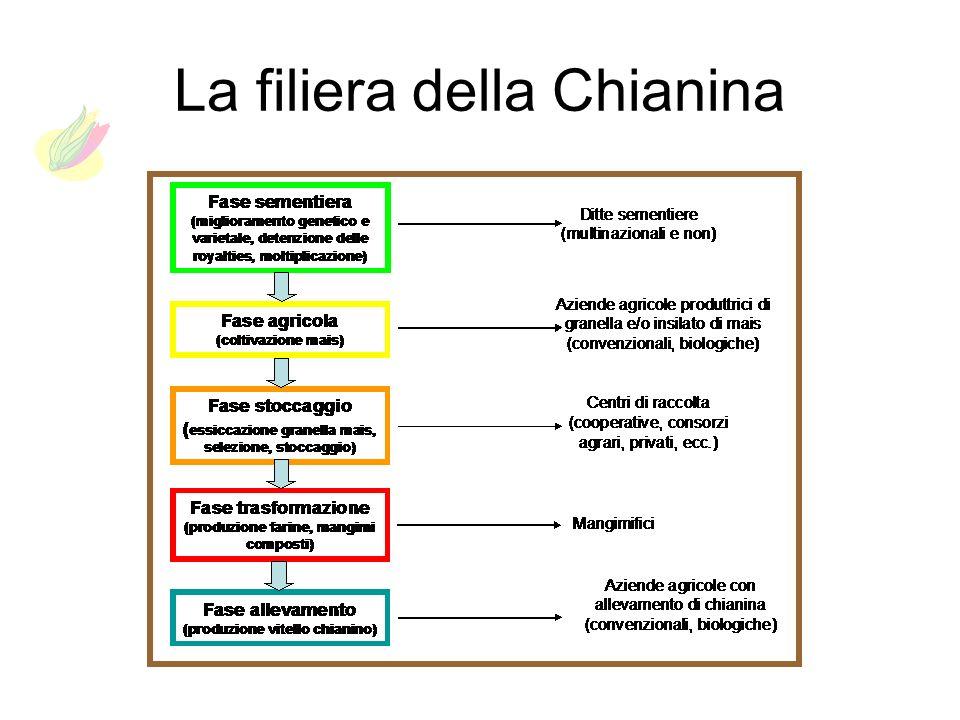 La filiera della Chianina