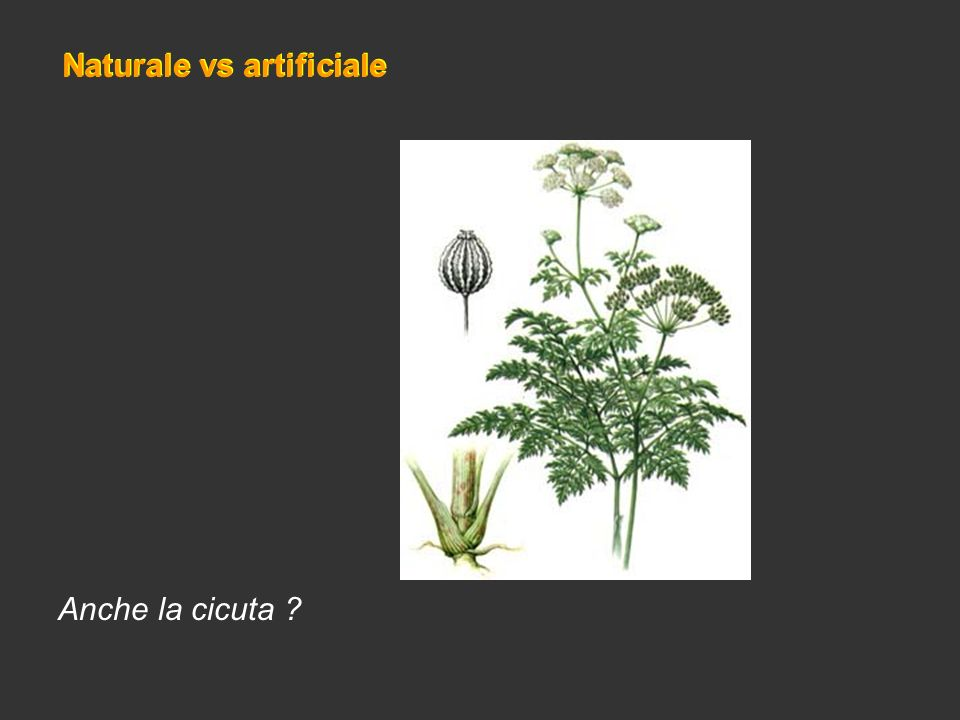 Naturale vs artificiale