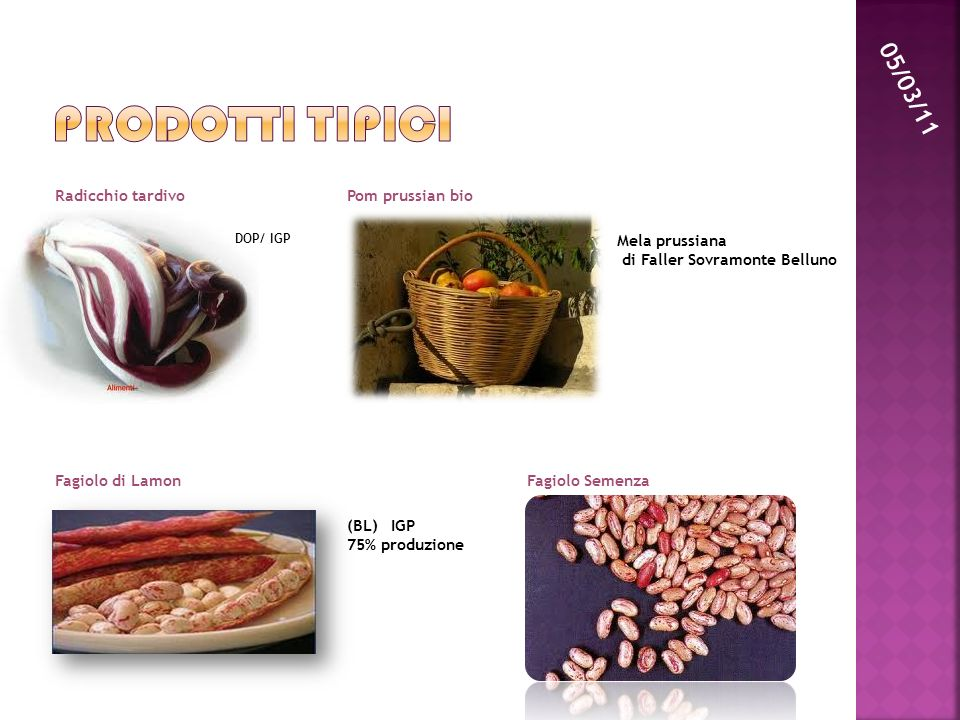 Prodotti tipici 05/03/11 Radicchio tardivo Pom prussian bio