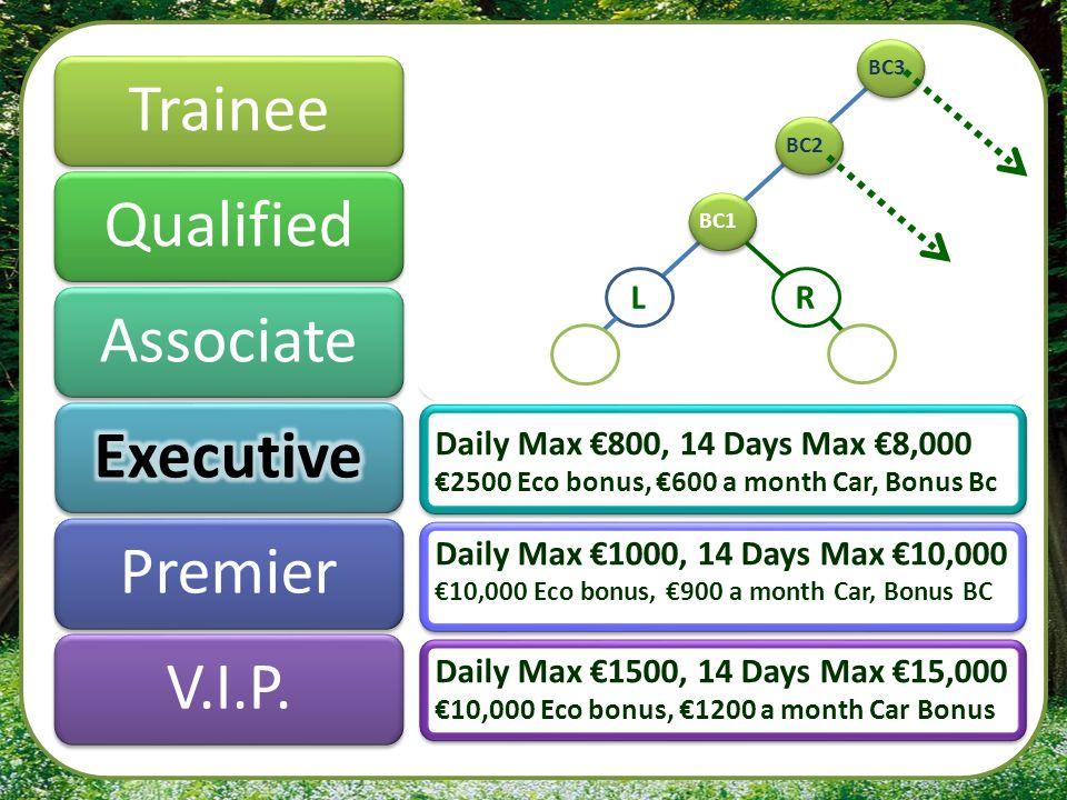 Trainee Qualified Associate Executive Premier V.I.P.