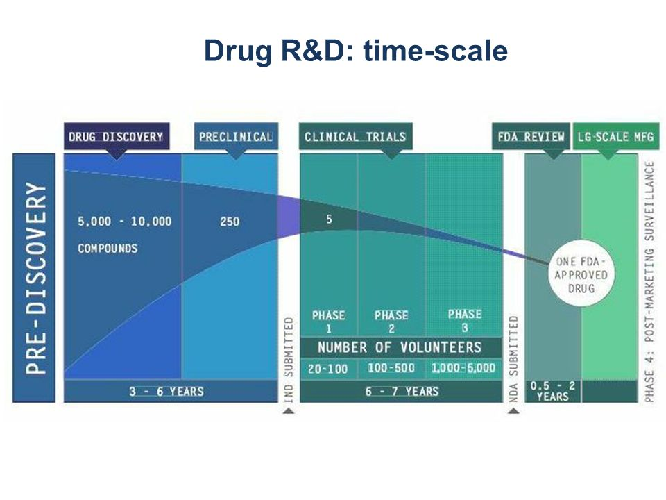 Drug R&D: time-scale