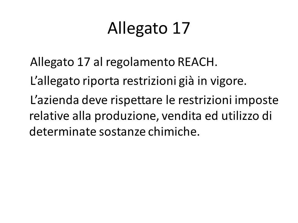 Allegato 17