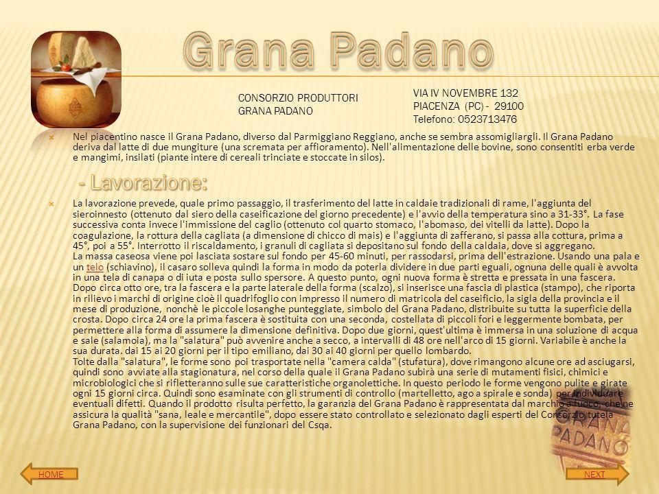 Grana Padano - Lavorazione: VIA IV NOVEMBRE 132