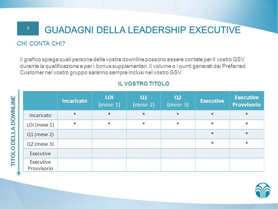 Executive Provvisorio