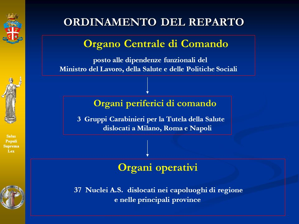 ORDINAMENTO DEL REPARTO