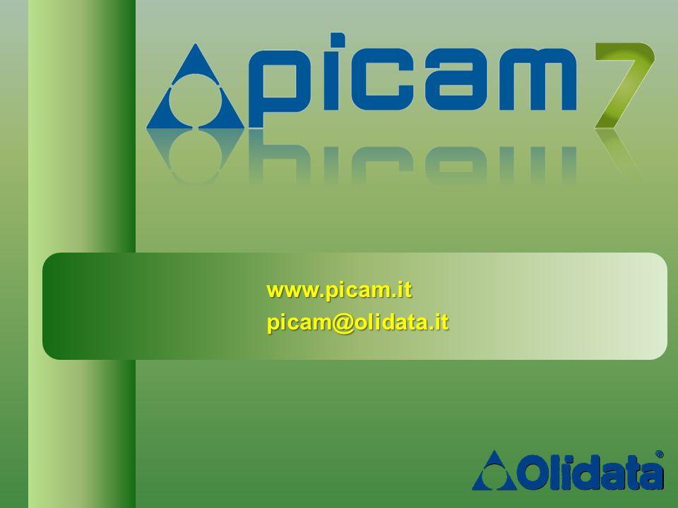 www.picam.it picam@olidata.it