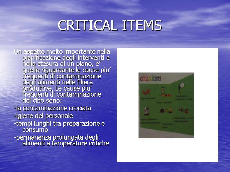 CRITICAL ITEMS