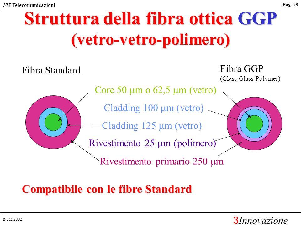 Struttura della fibra ottica GGP (vetro-vetro-polimero)