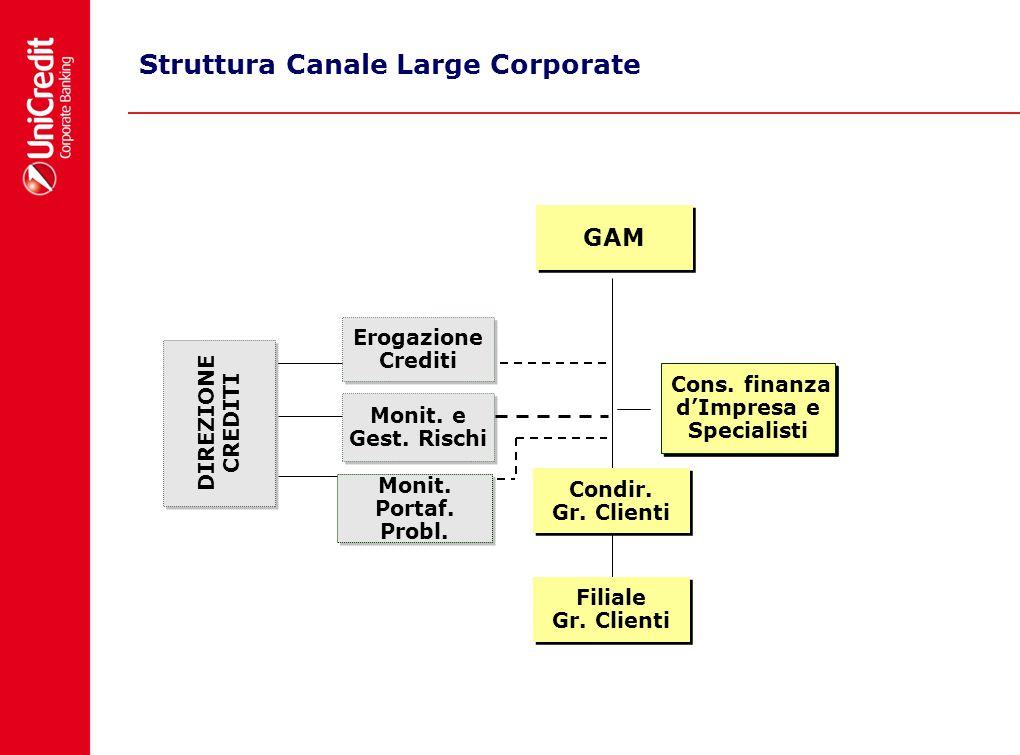Struttura Canale Large Corporate