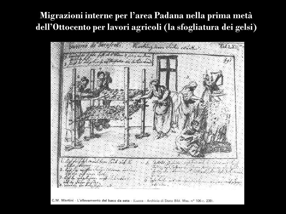 Migrazioni interne per l'area Padana nella prima metà dell'Ottocento per lavori agricoli (la sfogliatura dei gelsi)