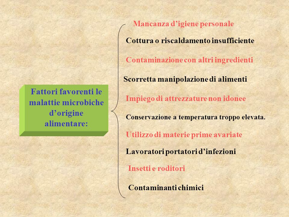 Fattori favorenti le malattie microbiche d'origine alimentare: