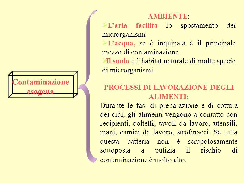 Contaminazione esogena PROCESSI DI LAVORAZIONE DEGLI ALIMENTI: