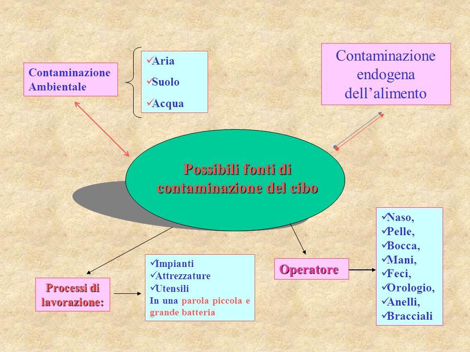Possibili fonti di contaminazione del cibo