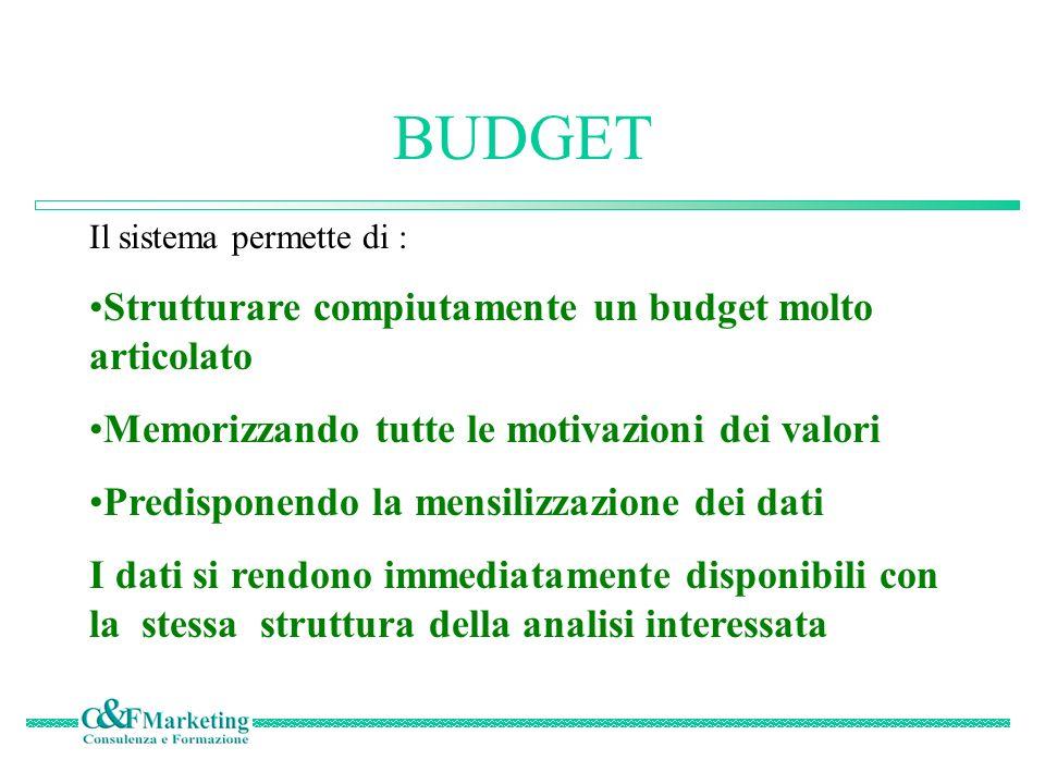 BUDGET Strutturare compiutamente un budget molto articolato