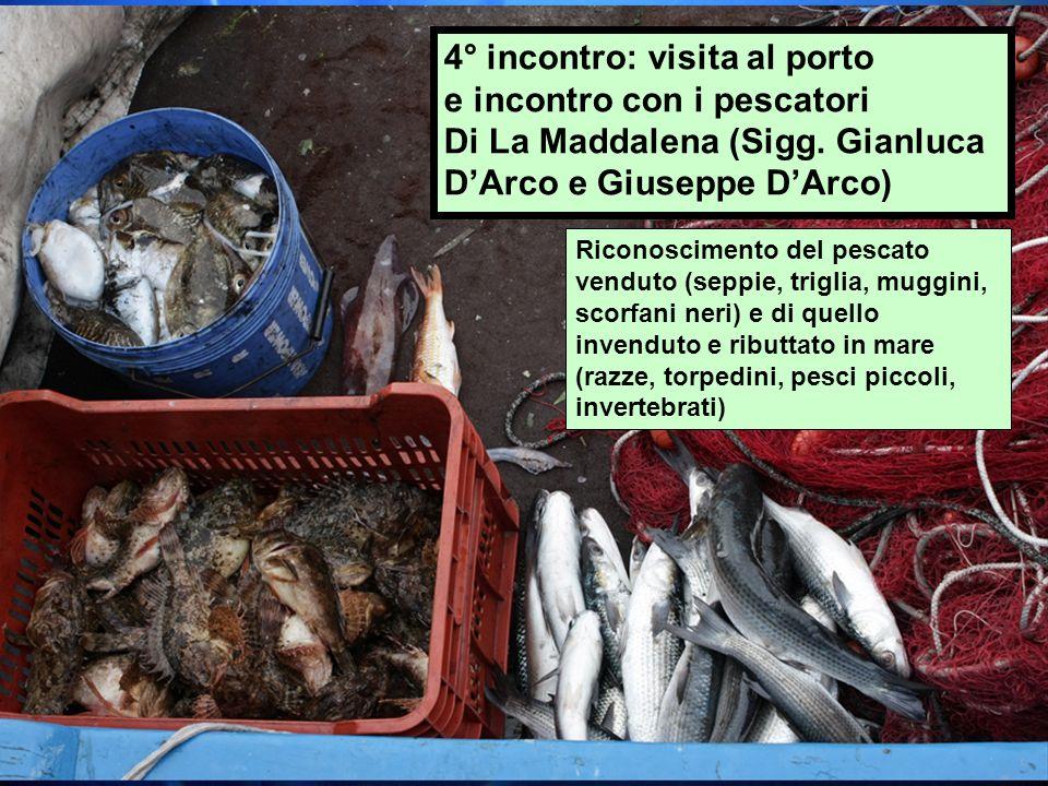 4° incontro: visita al porto e incontro con i pescatori