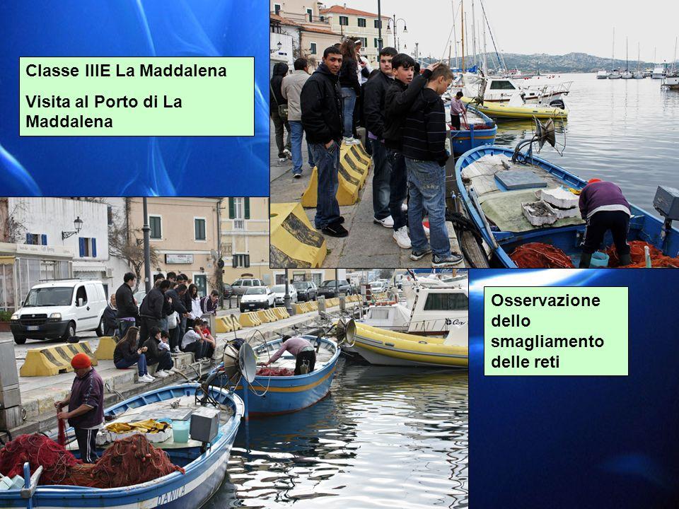 Classe IIIE La Maddalena