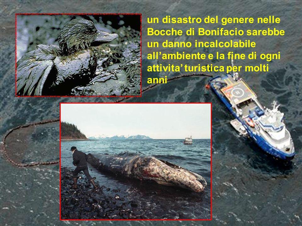 un disastro del genere nelle Bocche di Bonifacio sarebbe un danno incalcolabile all'ambiente e la fine di ogni attivita' turistica per molti anni