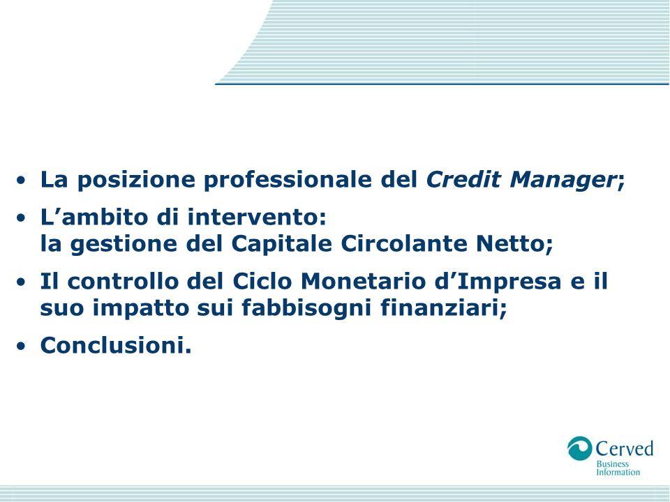 La posizione professionale del Credit Manager;