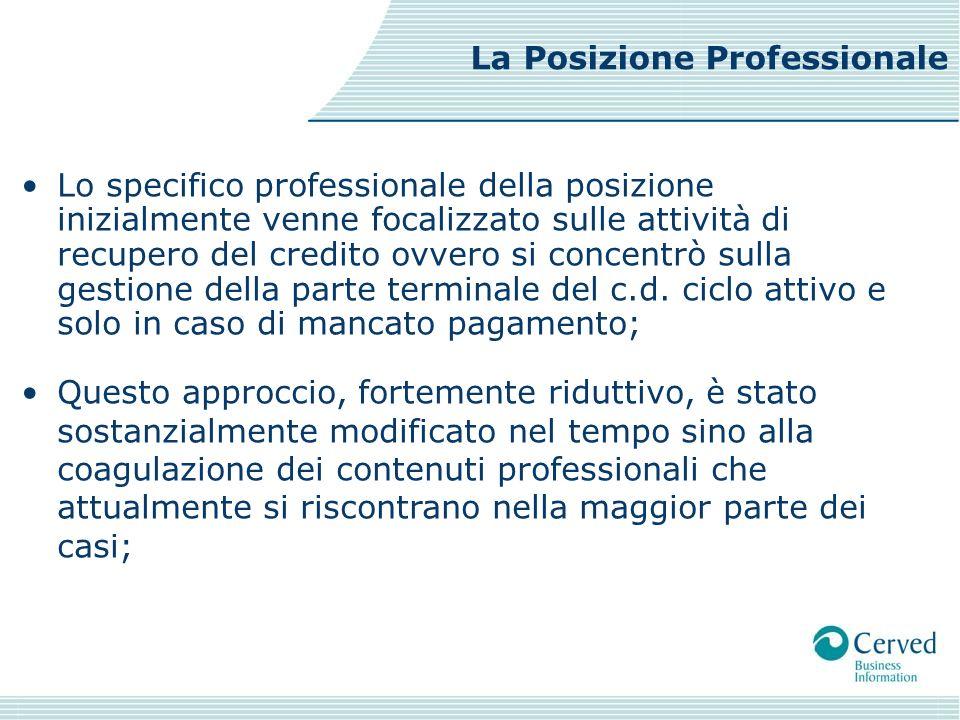 La Posizione Professionale