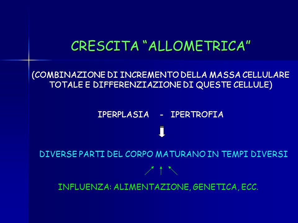 CRESCITA ALLOMETRICA