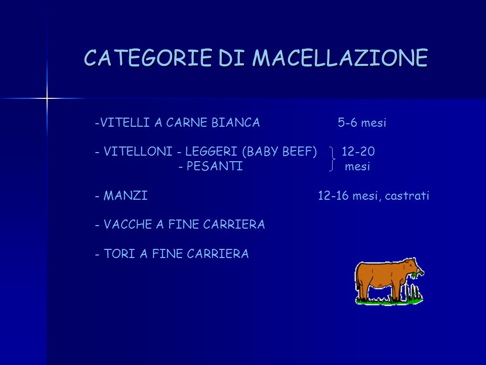 CATEGORIE DI MACELLAZIONE