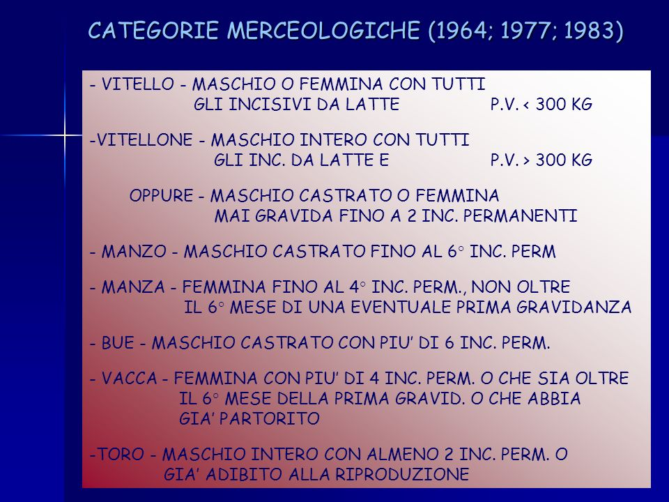 CATEGORIE MERCEOLOGICHE (1964; 1977; 1983)