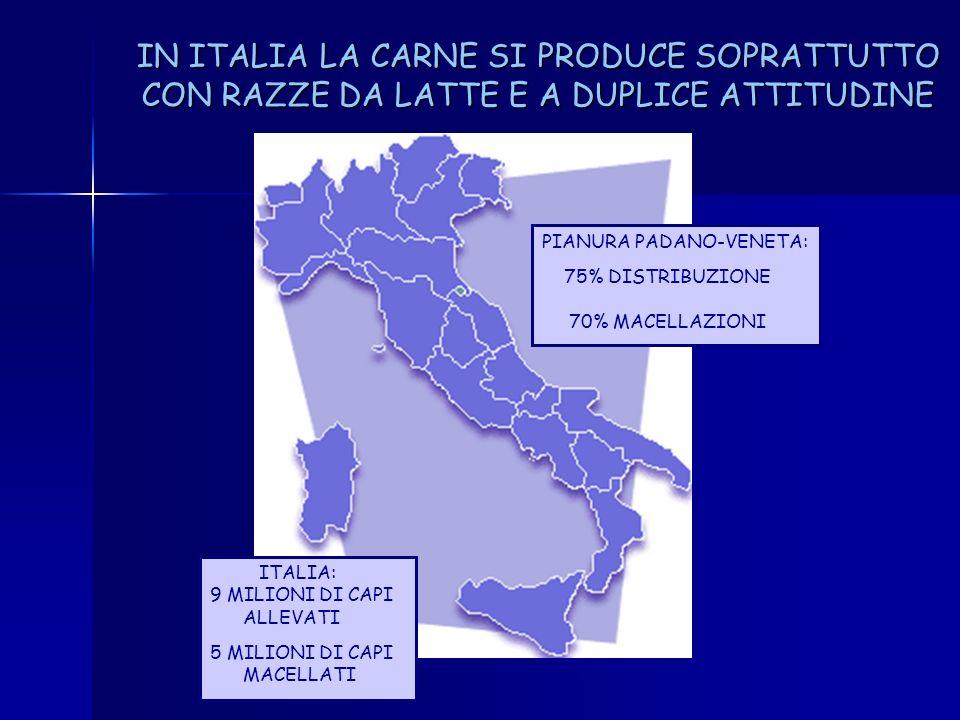 IN ITALIA LA CARNE SI PRODUCE SOPRATTUTTO