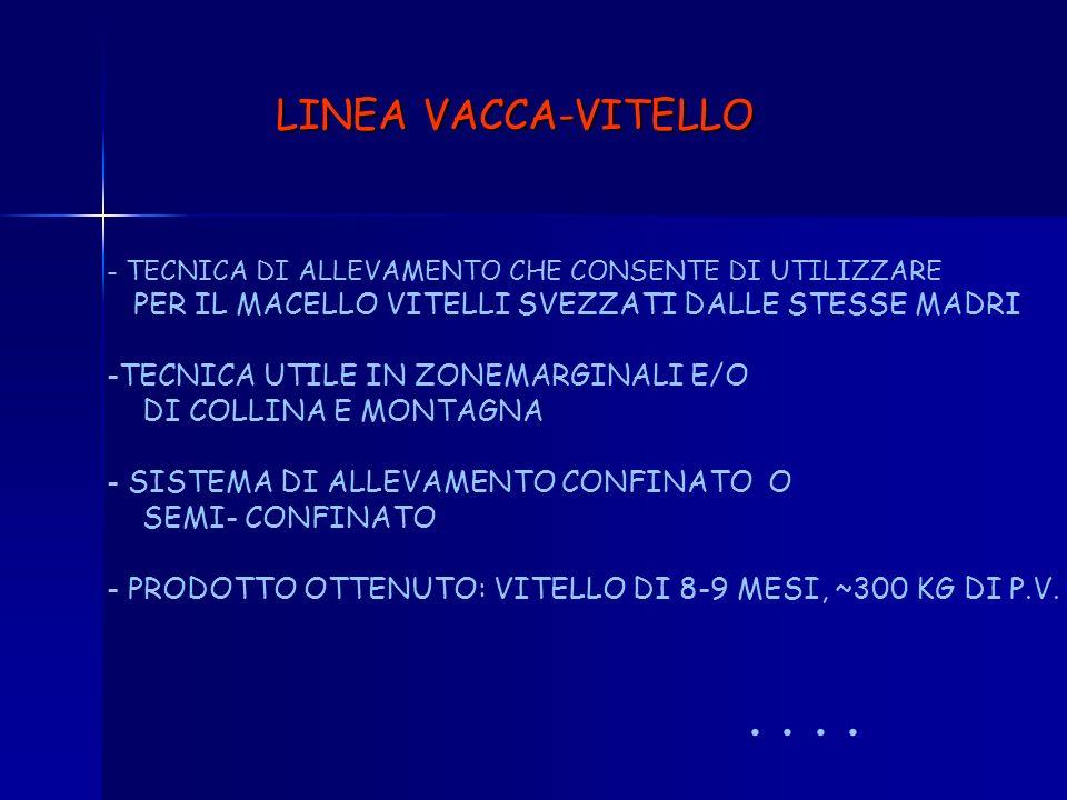 LINEA VACCA-VITELLO PER IL MACELLO VITELLI SVEZZATI DALLE STESSE MADRI