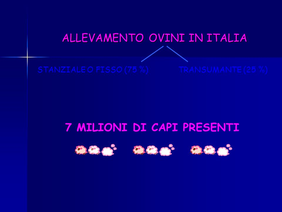 7 MILIONI DI CAPI PRESENTI