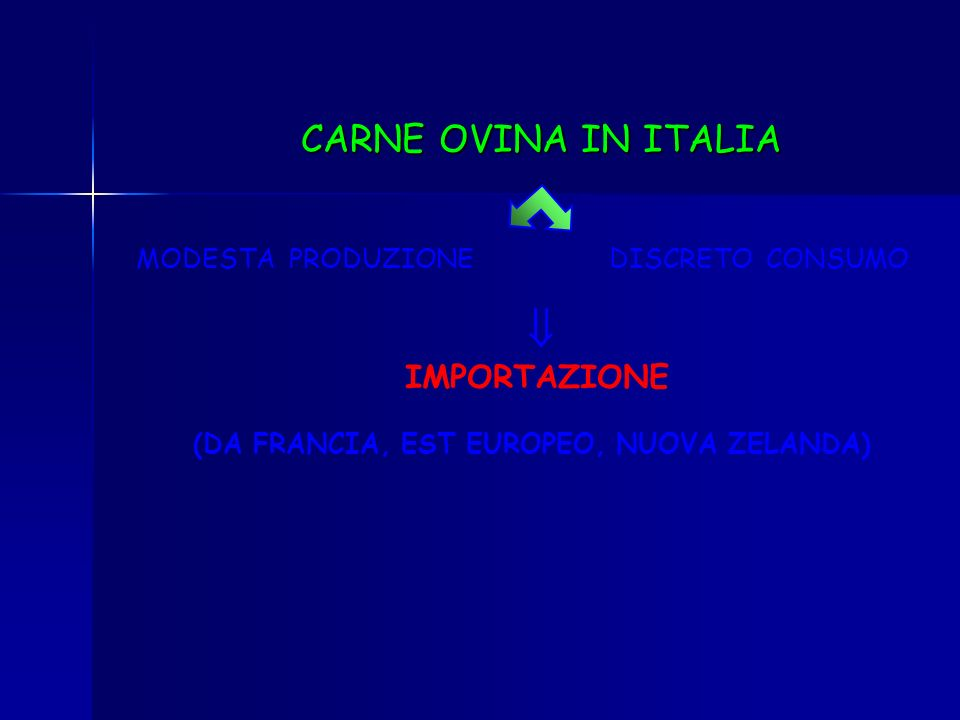CARNE OVINA IN ITALIA IMPORTAZIONE MODESTA PRODUZIONE DISCRETO CONSUMO