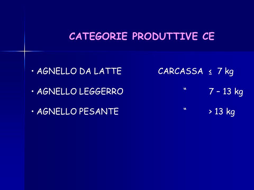 CATEGORIE PRODUTTIVE CE