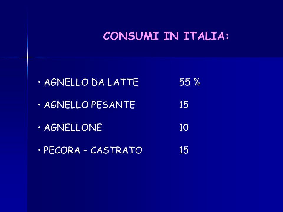 CONSUMI IN ITALIA: AGNELLO DA LATTE 55 % AGNELLO PESANTE 15