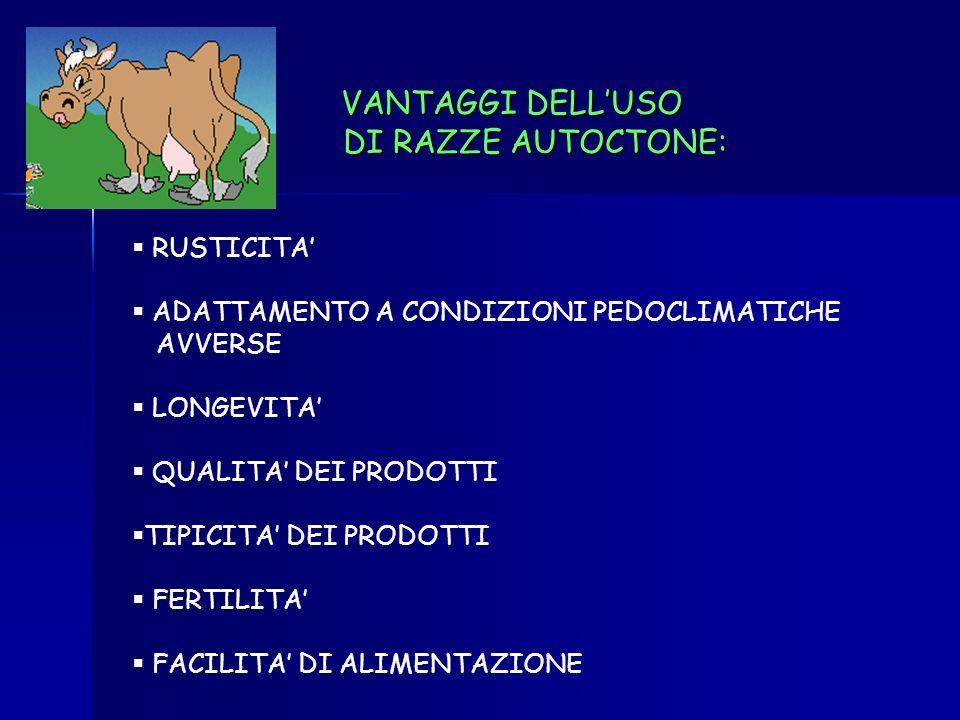 VANTAGGI DELL'USO DI RAZZE AUTOCTONE: RUSTICITA'